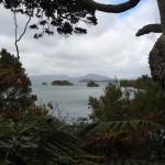 Ein Blick von Stewart Island