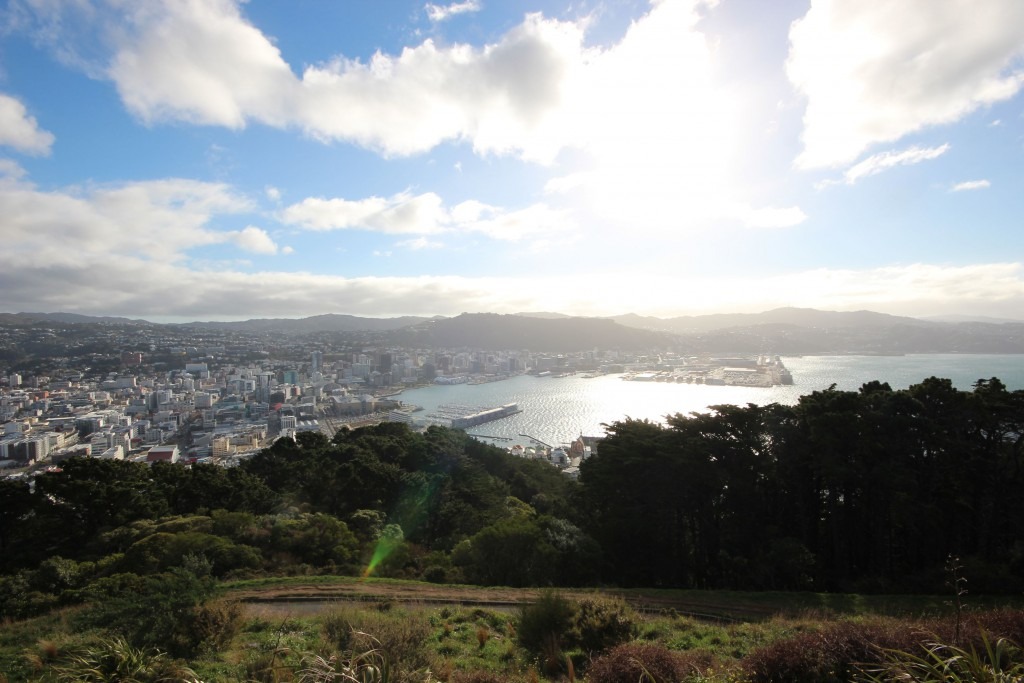 Blick auf Wellington vom Mount Victoria.
