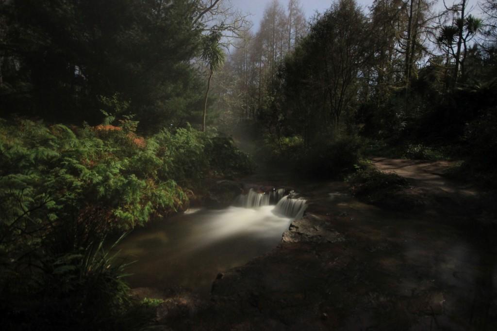 Kerosene Creek. Eine heiße Quelle, in der wir baden waren.