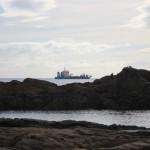 Ein Schiff vor Tauranga