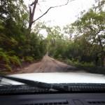 Mit 300000 km/h durch den Dschungel.