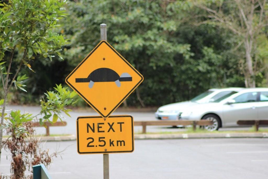 ...Auf welche dieses Zeichen bereits hinwies.