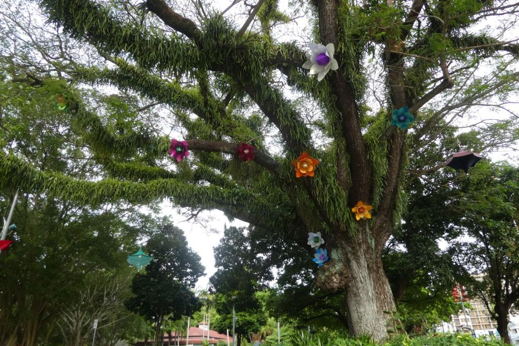 Blumen im Garten. So zwanzig Arten.